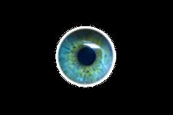 eye-492262_640